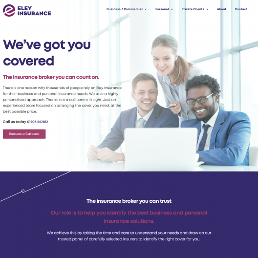 Hosting and Web Design Services for Insurance Companies